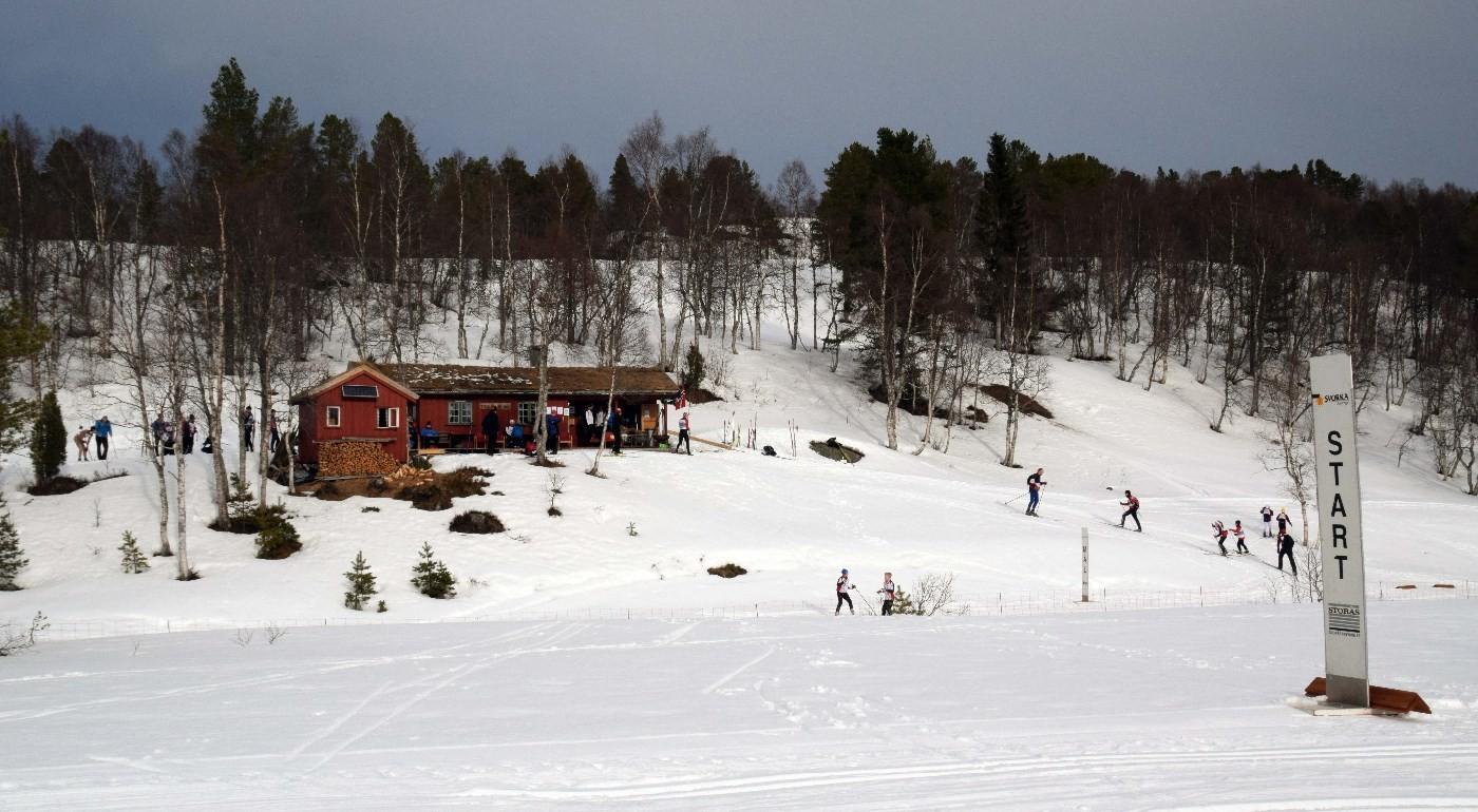 Søndagsturen går til Tørsåsløa i Rindal.  Arkivfoto: Jon Olav Ørsal