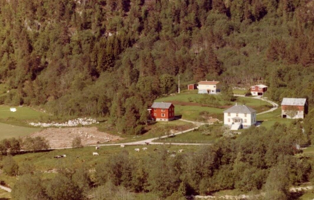 Lauvåskogan før i tida
