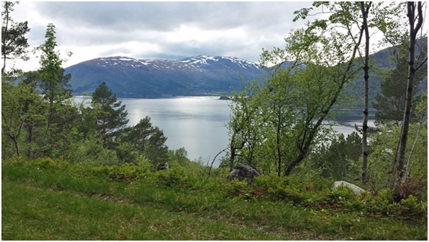 Fra Engdalen Foto: Trine Glåmen