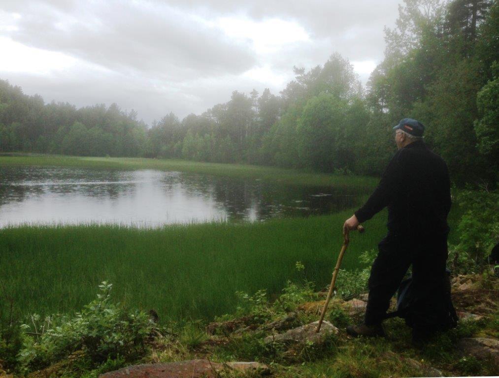 Jon Dønheim står og ser utover Honnstadvatnet og konstaterer at sivet held på å ta overhand. Foto: Vidar Sogge