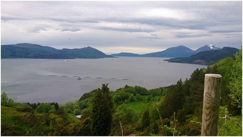 Utsikt fra Innreiten.  foto: Irene Røe Vågan
