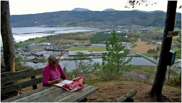 Utsikt frå Roparen.  Foto: Svein Tjelle