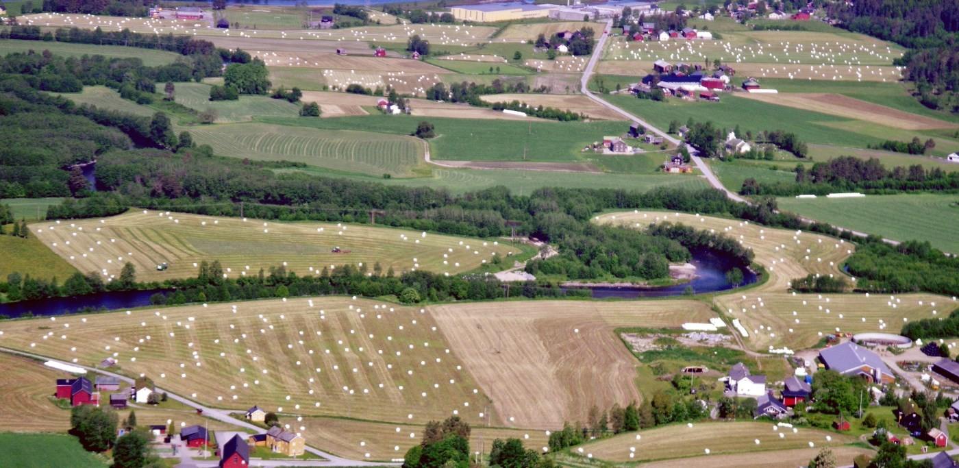 Siloballer i tusenvis - slik var utsikten frå Storhaugen søndag føremiddag.  Foto: Jon Bruset