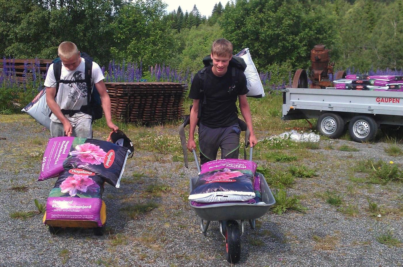 Fullt lass både i trillebåra og i ryggsekken for Steinar og Frikk.  Foto: Jon Olav Ørsal