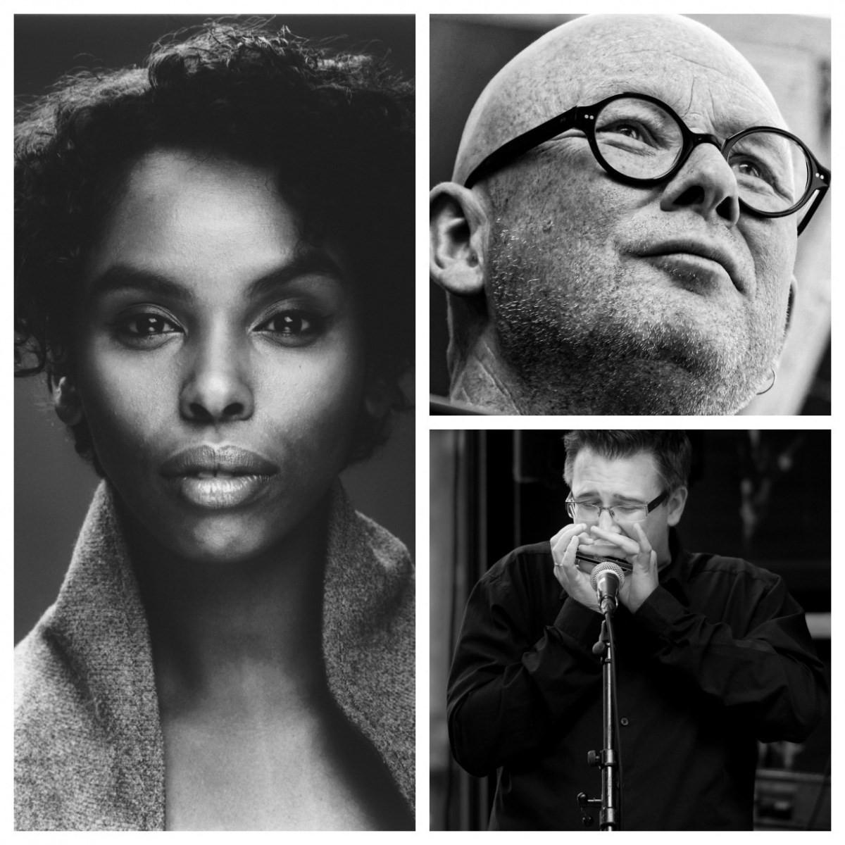 Dei tre utgjer ein sterk trio, med Noora Noor, vokal, Dr. Bekken på piano og Richard Gjems på munnspel .  Foto: Todalshytta