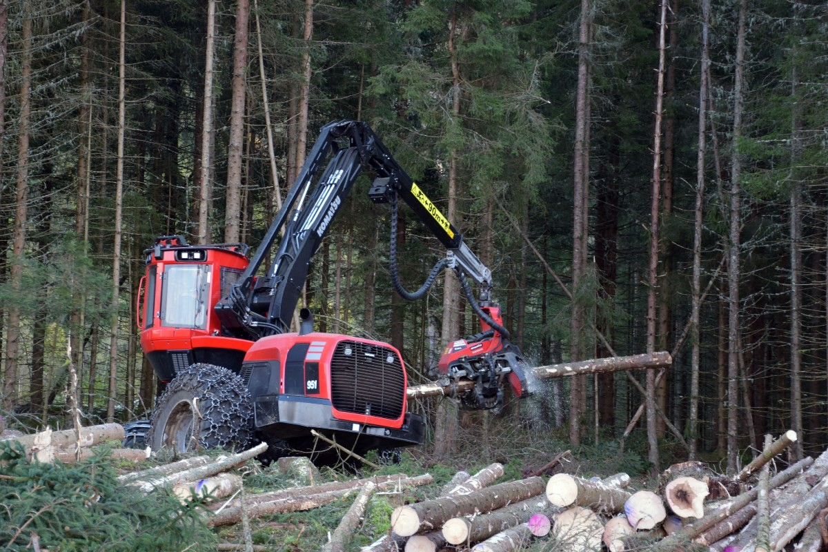 Effektivt utstyr!  Hogstmaskina har kapasitet på 25-30 m3 i timen, og feller, kvister, kapper og merker i ein operasjon.  Foto: Jon Olav Ørsal
