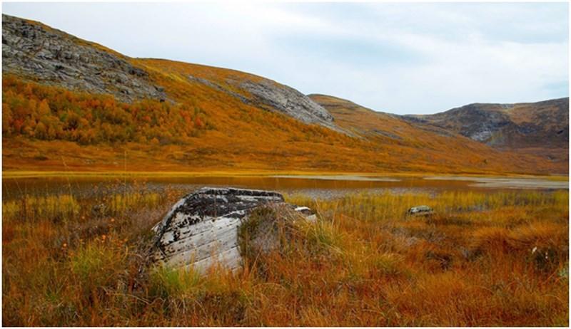 Denne søndagen går turen til Vassdalen.  Foto: Norunn Holten