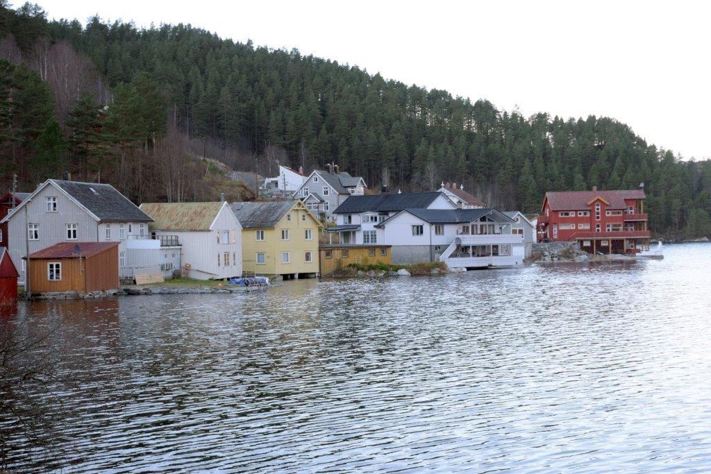 StorFlo_Todalsøra_4288
