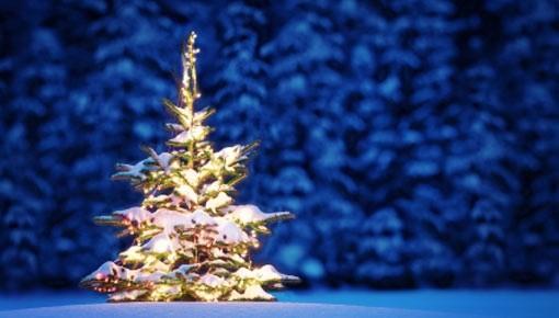 Juletrefest på Nordvik