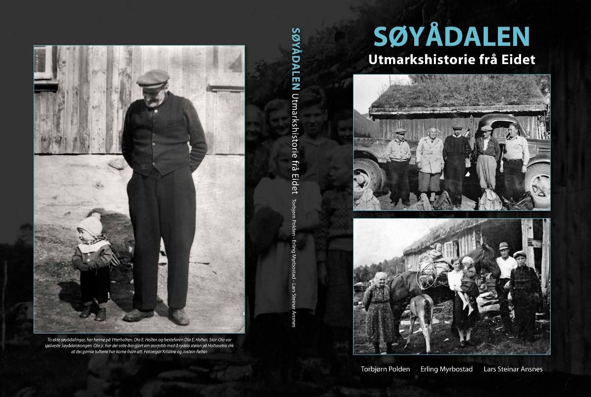 Omslaget på Søyådalsboka ser slik ut.