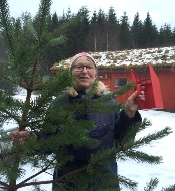 Har du mista ein bærplukkar i Øyalia, lurer Marit Sansen Søyset.  Foto: Ragnhild A. Moe