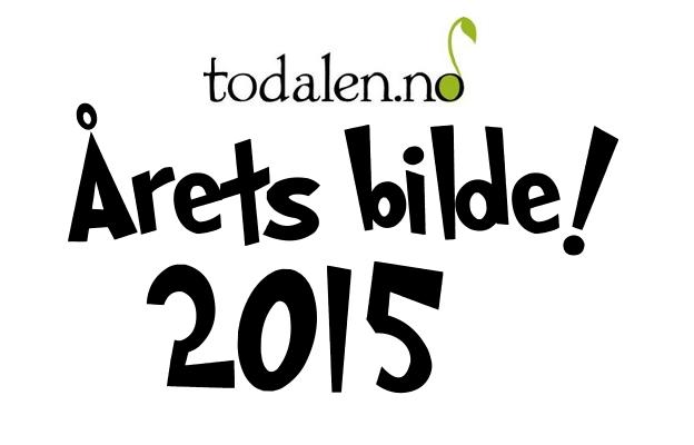 Stem på Årets bilete 2015