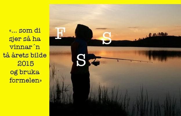 FSS_del1