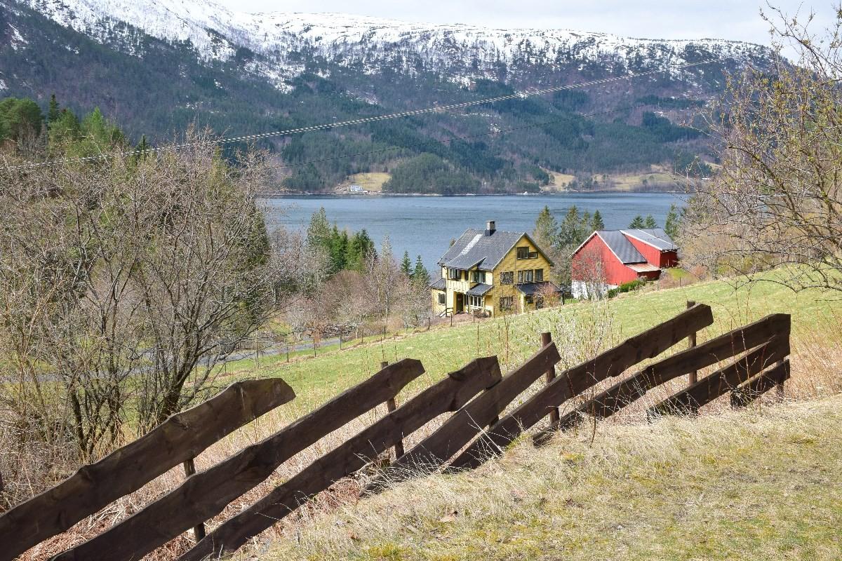 Det vårast i arboretet - 7. mai er det sesongopning.  foto: Jon Olav Ørsal