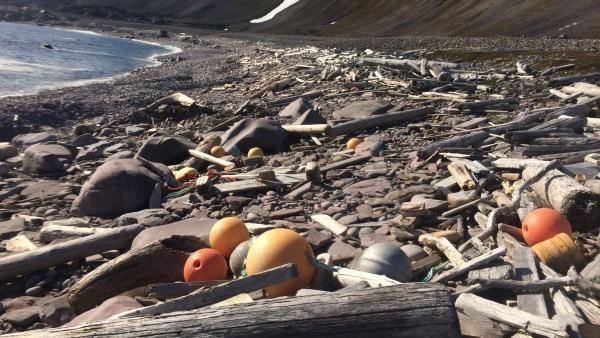 Bli med i ryddeaksjon og bli «Årets strandrydder»