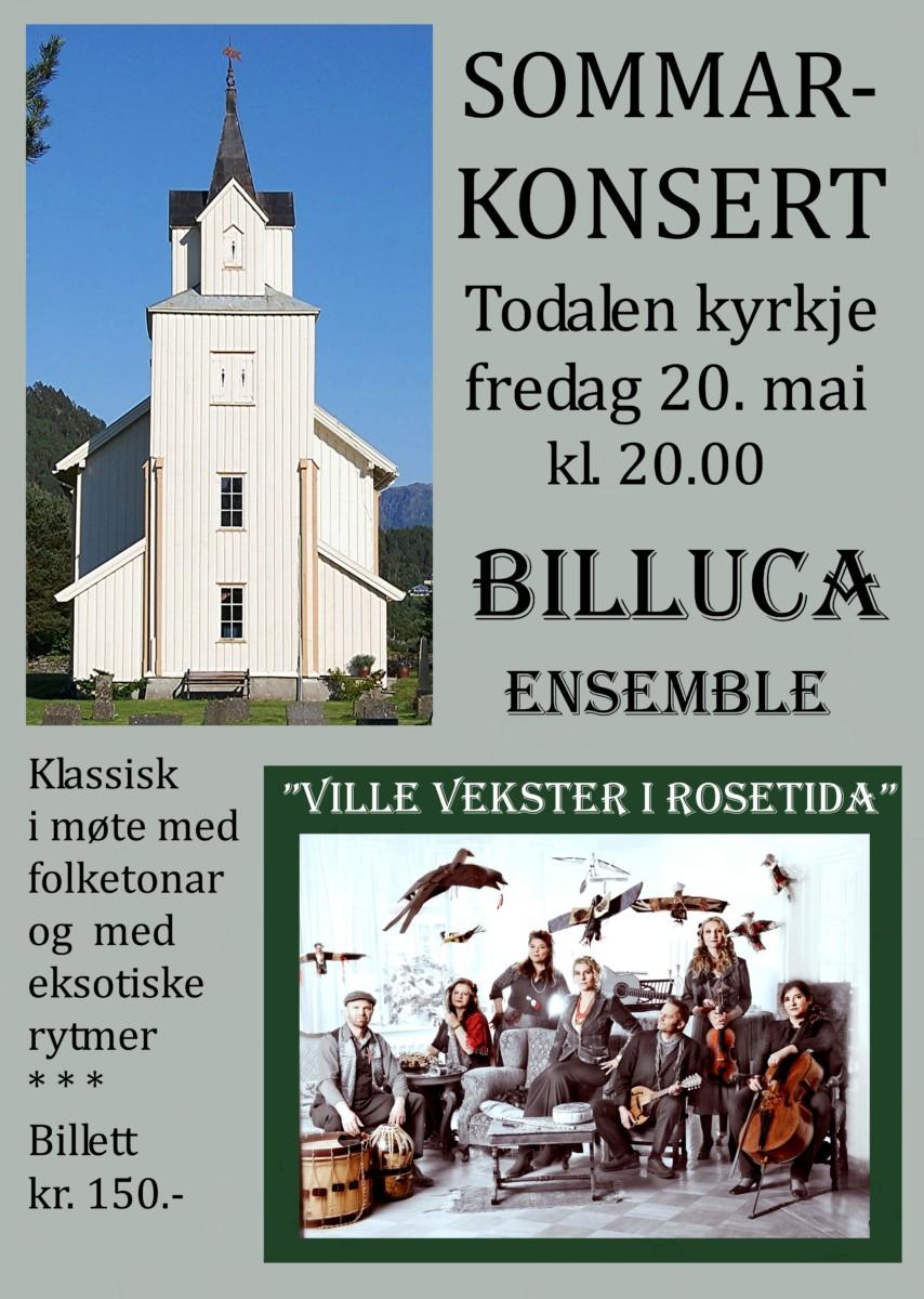 2016 05 20 Plakat Todalen