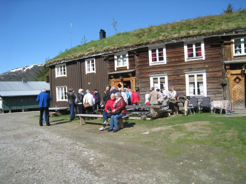 Kårøyann i Hemne.  Foto: Sigrun Ørsal