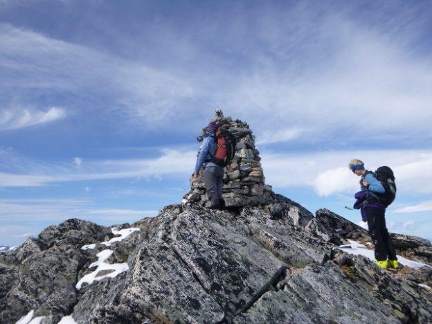 Endeleg på toppen av Neådalssnota.  foto: Nils Ove Bruset