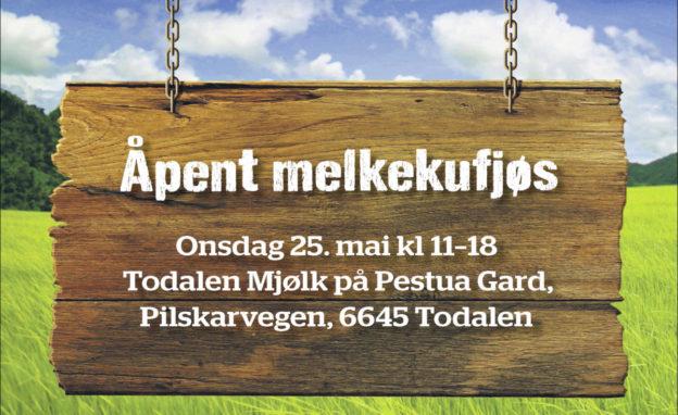 Plaakat_Fjossytemer Todalen 33573