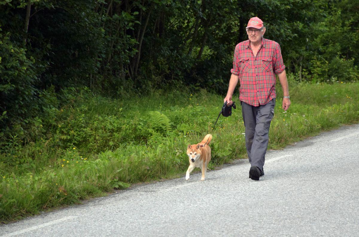 Eivind og Nakari på sin runde rundt bygda onsdag føremiddag.  Foto: Jon Olav Ørsal