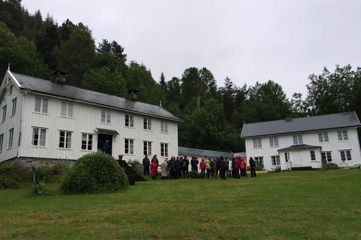 Trøinn på Årnes. Foto: Dordi J H