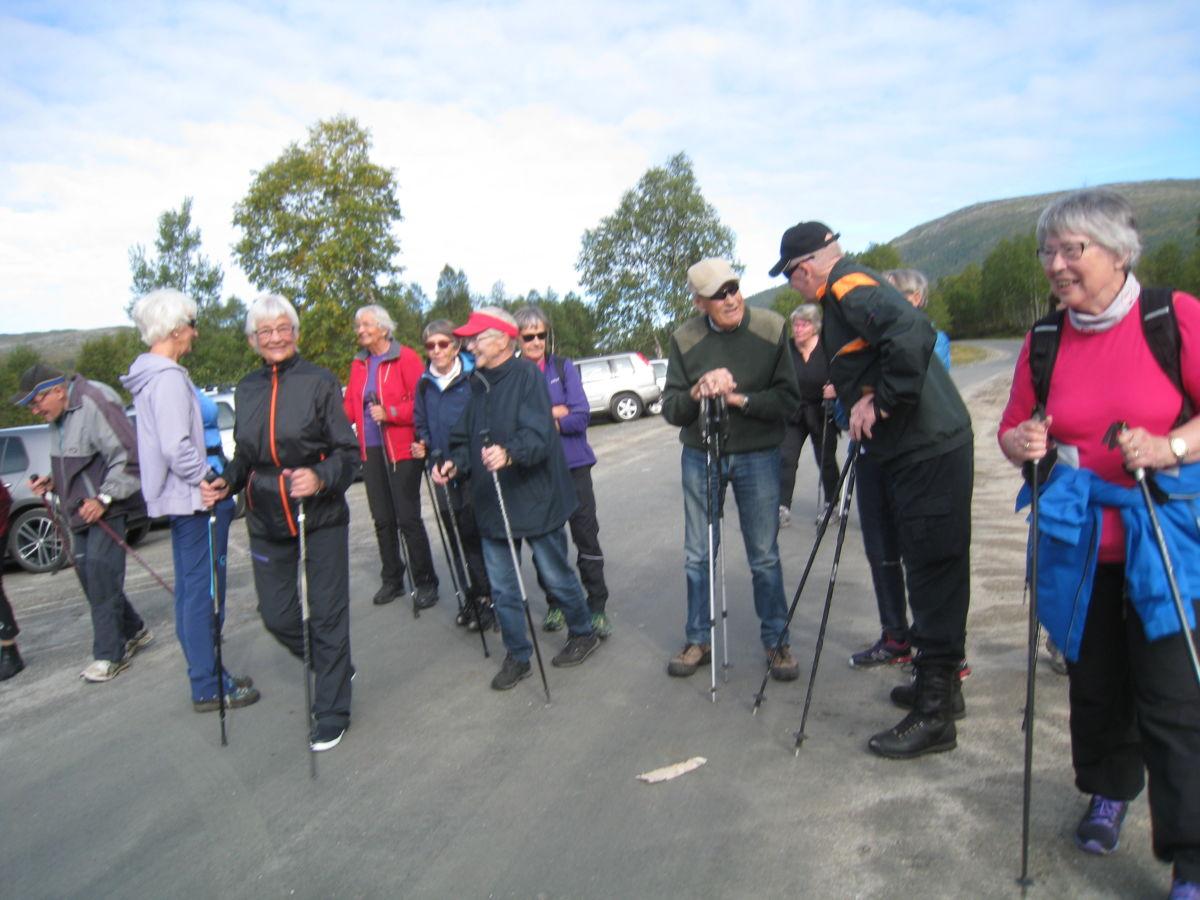 Stavgang i Vindøldalen.  Foto: Sigrun Ørsal