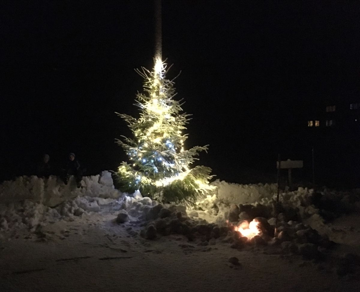 Julegrana lyser no i Brusetmarka