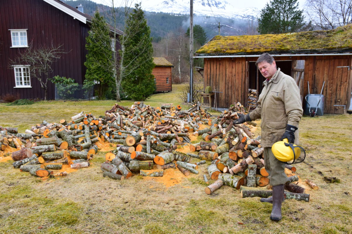 Harald Myrås ligg godt an med vedarbeidet.  Foto: Jon Olav Ørsal
