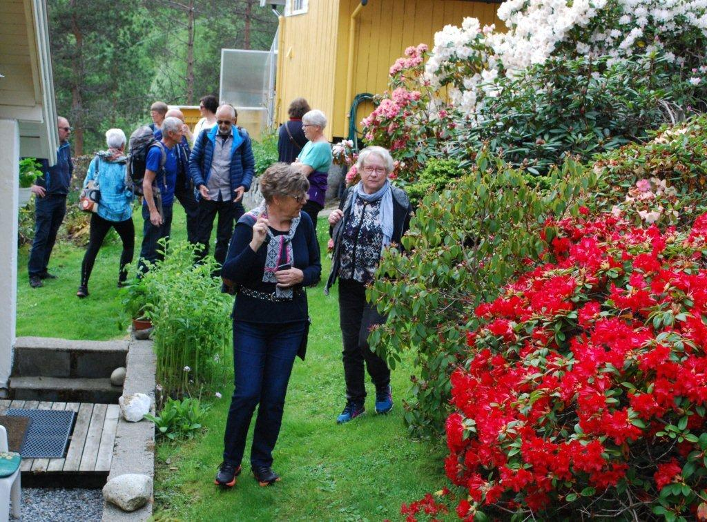 Intresserte hagelagsfolk. Magnar Oldervik helt til venstre.  Foto: Sverre Kjølstad