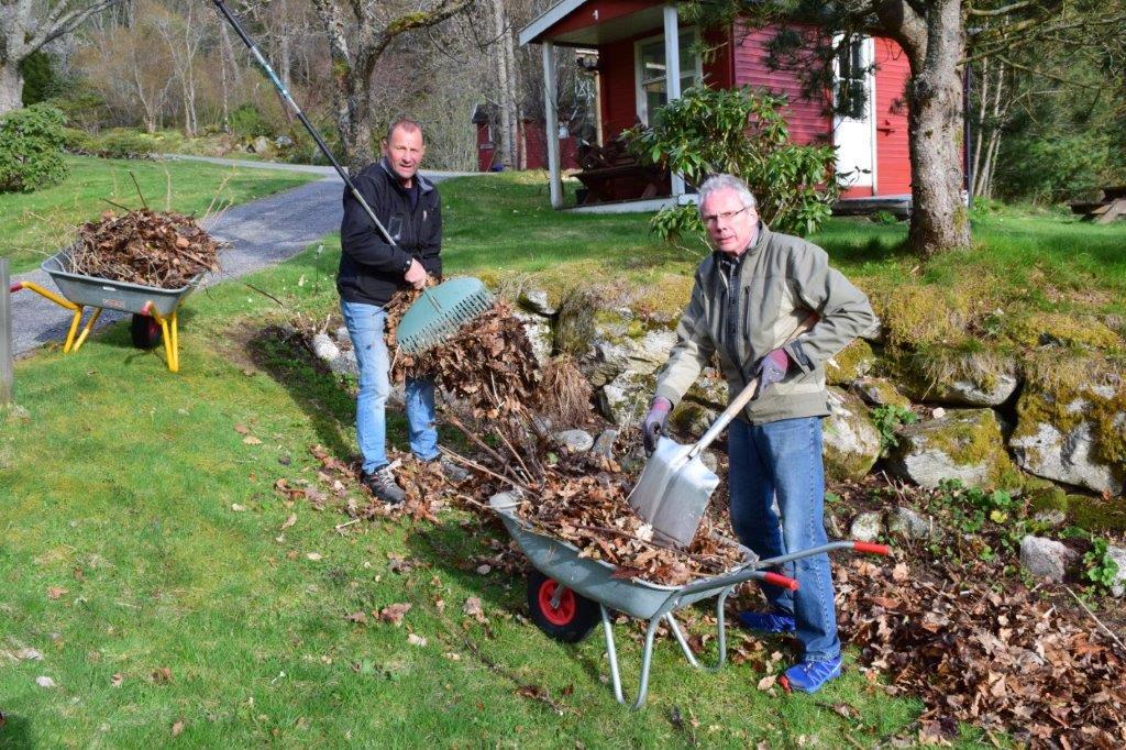 Onsdag er det dugnad i arboretet - her får vaktmester Ola Bruset god hjelp av Leif Otto Frønes.  Arkivfoto frå 2017: Jon Olav Ørsal