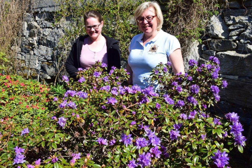Det blir mykje blomstring i arboretet denne våren.  Foto: Jon Olav Ørsal