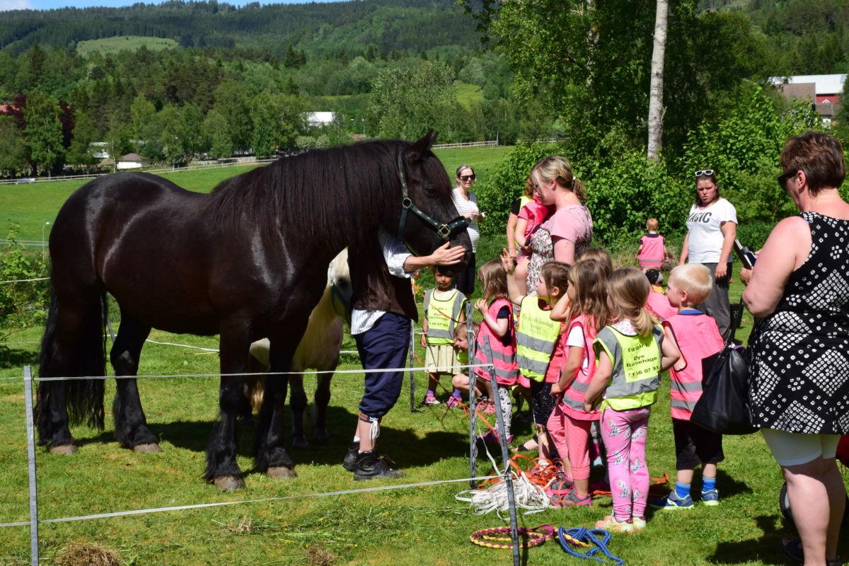 Barnehagane på Øye og på Bårdshaugen deltok på Onnadagen. Her får hesten ein liten godbit.  Foto: Jon Olav Ørsal