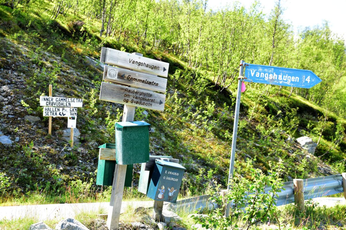 ved eit skille - her går hovudvegen vidare til Røymoen, medan vi tok av til Vangshaugen.  Foto: Jon Olav Ørsal