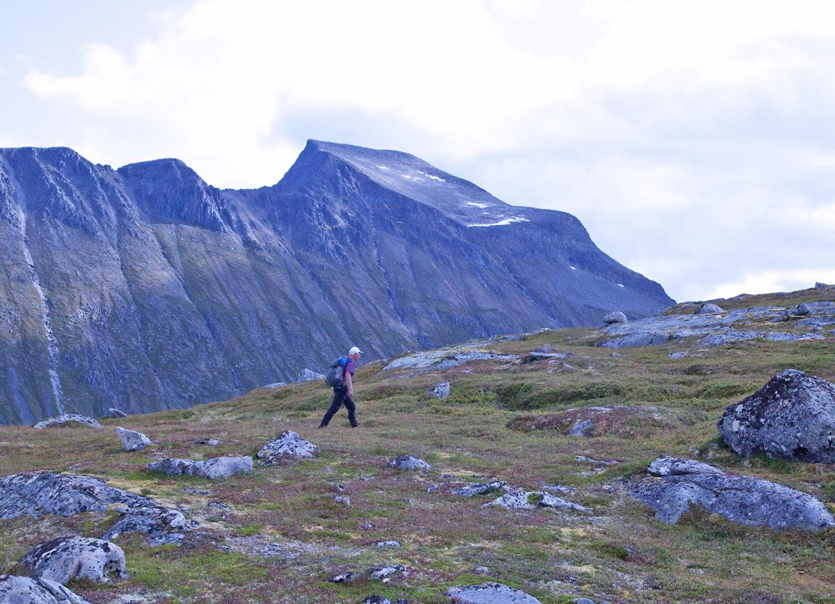 På vei oppover nordsida på Bollknubben. Ser mot det enorme Snøfjellet.  Foto: Harald Egil Folden