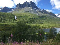 Skarfjellet i Innerdalen