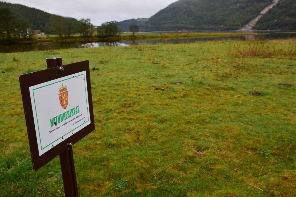 Informasjonsmøte Todalsøran naturreservat