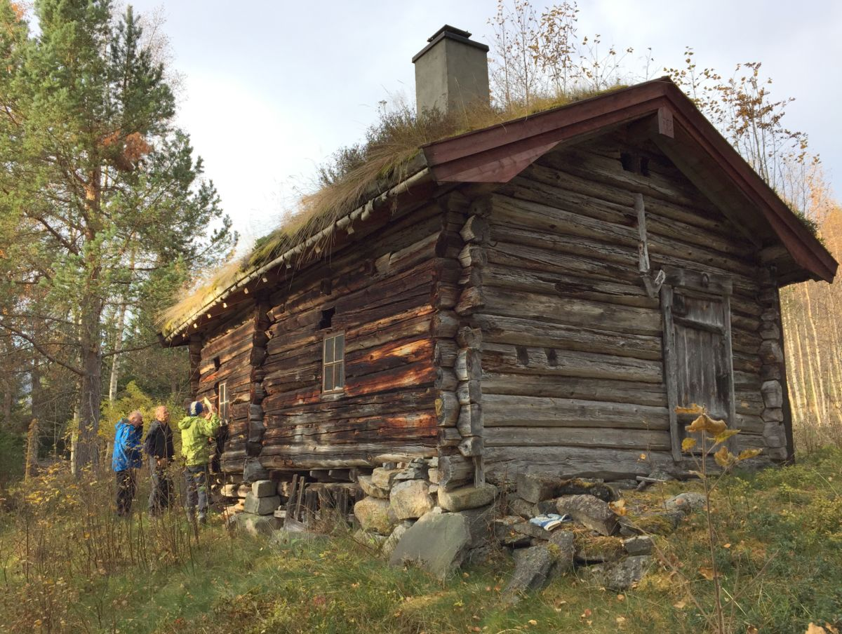 Nestusetra på Hjellnes. Foto: Dordi J H