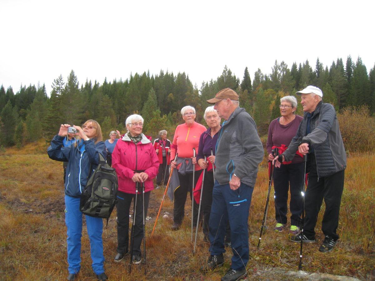Det var 41 som deltok på stavgangen på Nordmarka.  Foto: Sigrun Ørsal