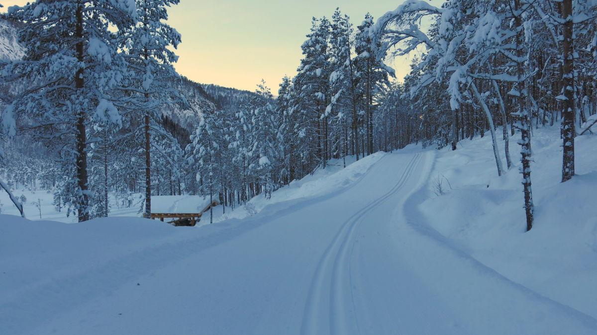 Fine forhold for skitur no! Foto: Dordi J H