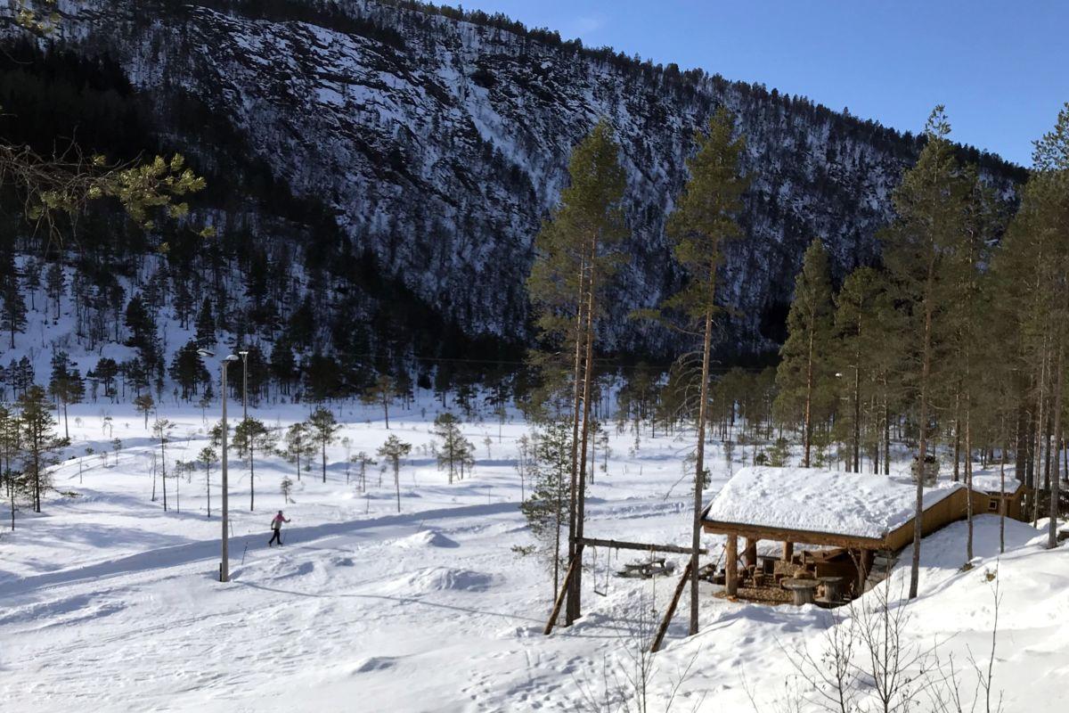 Fint for skitur oppå Tjønnmyrå no! Foto: Dordi J H