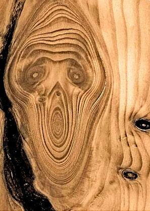 Naturens «skrik» vant månadens bilete for mars
