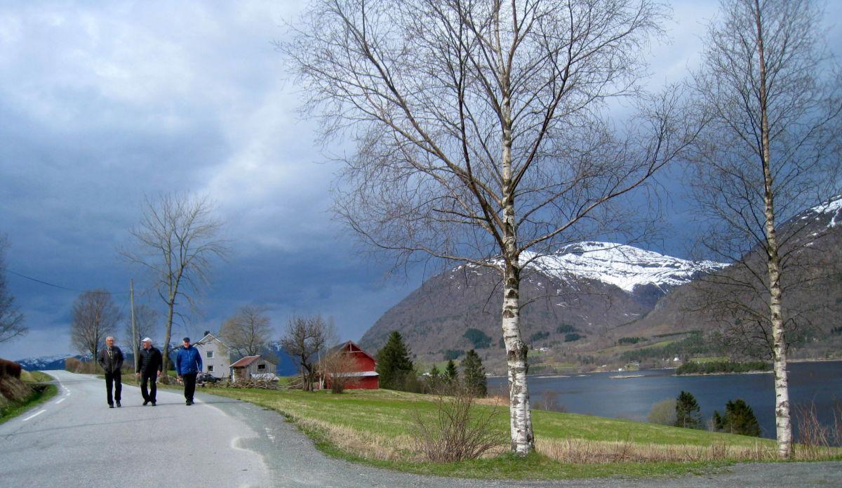 Stavgang på Bølandet. Foto: Sigrun Ørsal
