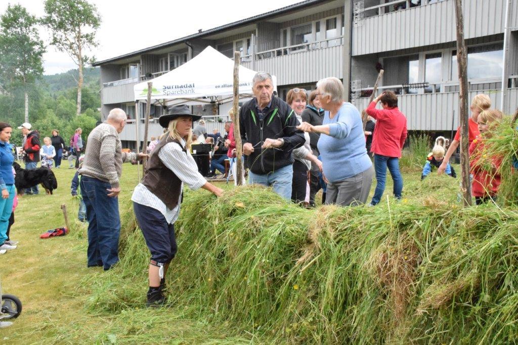 Mykje kompetanse på hesjing -  frå venstre Jon Haugen, Laila Ulvestad, Lars halle og Brit Grendstadbakk.  Foto: Jon Olav Ørsal
