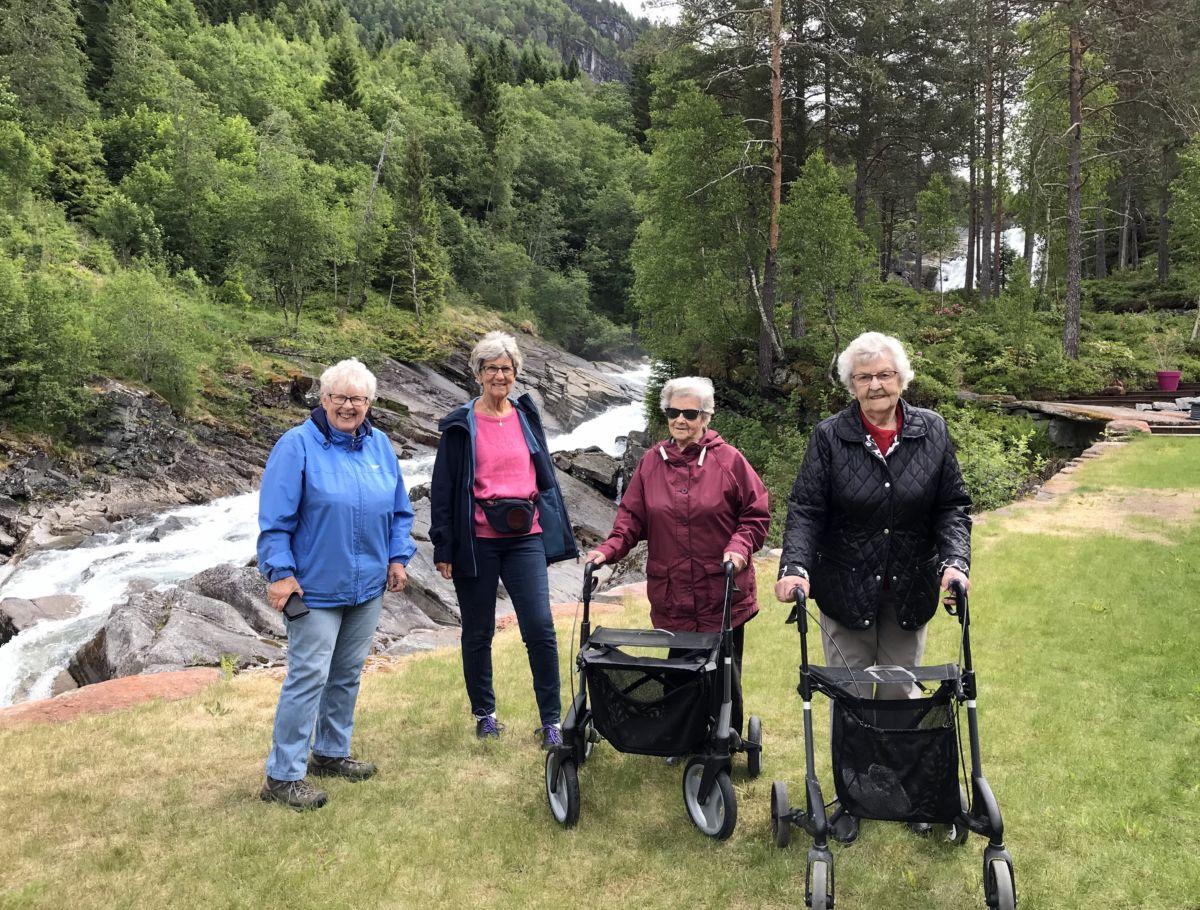 Fint ved Toåa og Fossheim. Frå venstre: Karen Johanne, Jorunn, Inf\grid og Jenny. Foto: Dordi JH