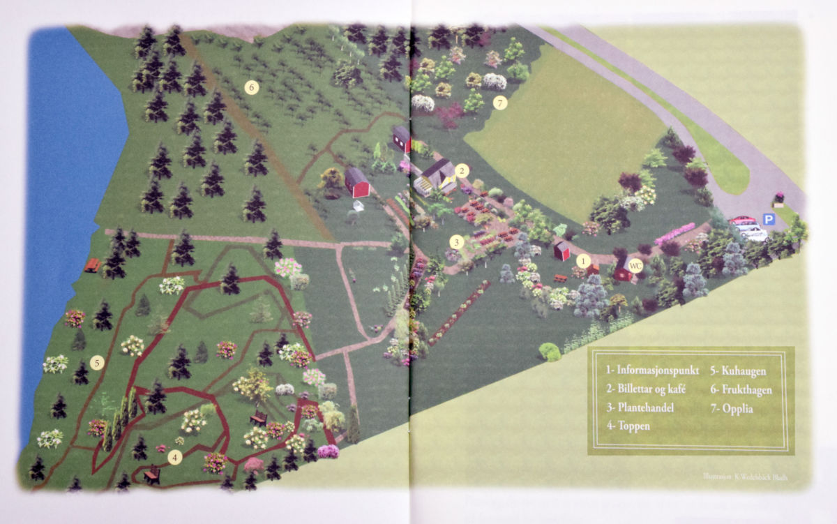 Svinviks Arboret_kart_2674