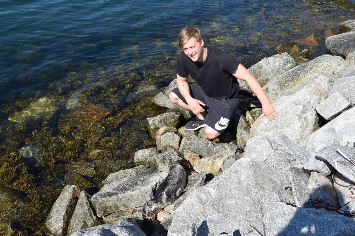 Det er ikkje ofte det er sel i Todalsfjorden, konkluderte Ola Talgø.  Foto: Jon Olav Ørsal