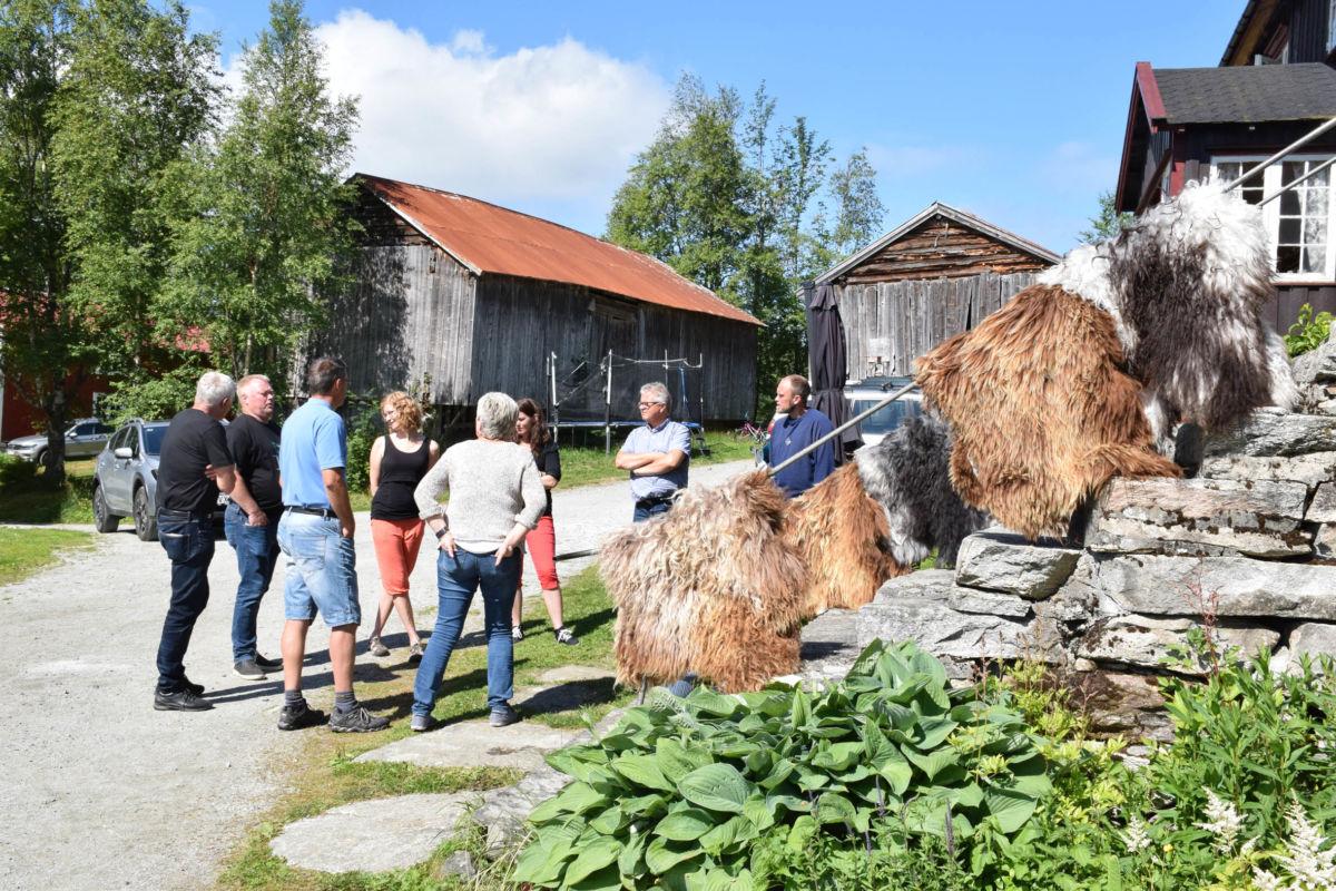 På Hjellnes står gammelnorsk spel i høgsetet.   Foto: Jon Olav Ørsal