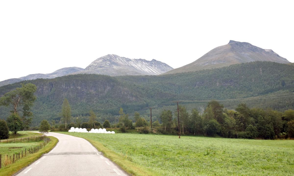 Den første snøen er eit faktum - og temperatur på 4-talet.-  Foto: Jon Olav Ørsal