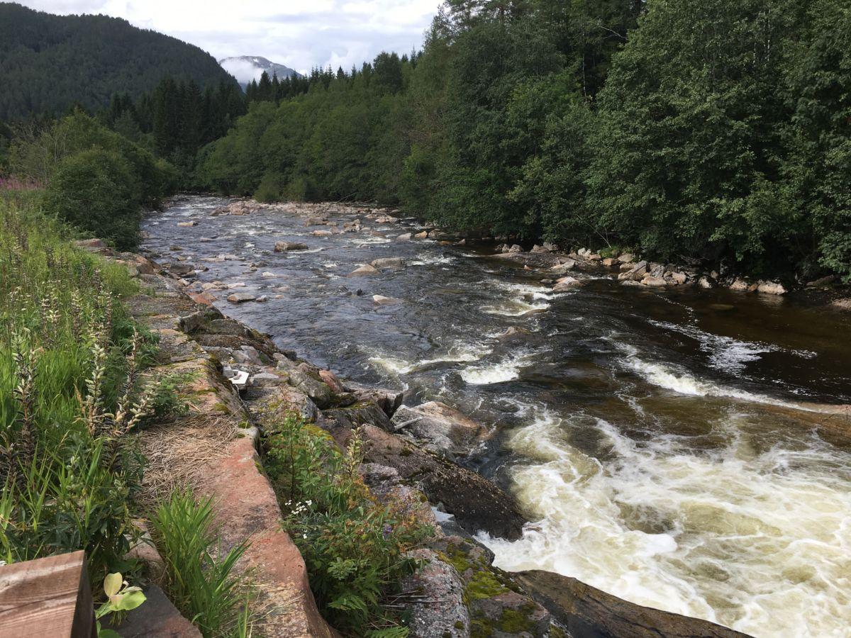 Herfra og nedover kan du fiske - her er vassføringa ca 6 m3/sek i ettermiddag.