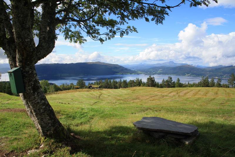 Utsikt fra Storsetra i Stangvika og over til Tingvoll. Foto: Norsk vandrefestival